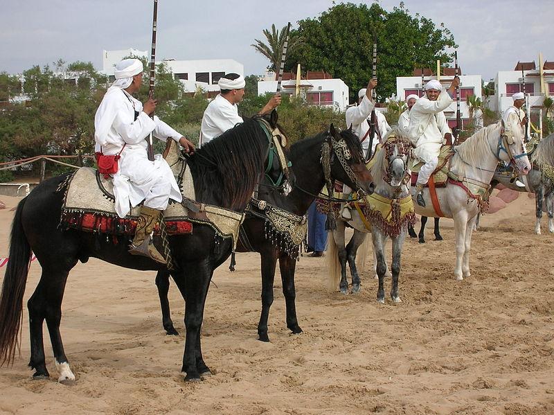 Berber in Marokko zeigen ihre Kriegskunst