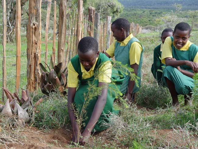 Green Belt Bewegung in Kenia (c) USAID