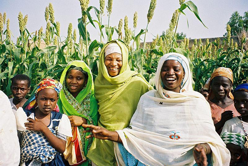 Frauen arbeiten in der Landwirtschaft (c) USAID
