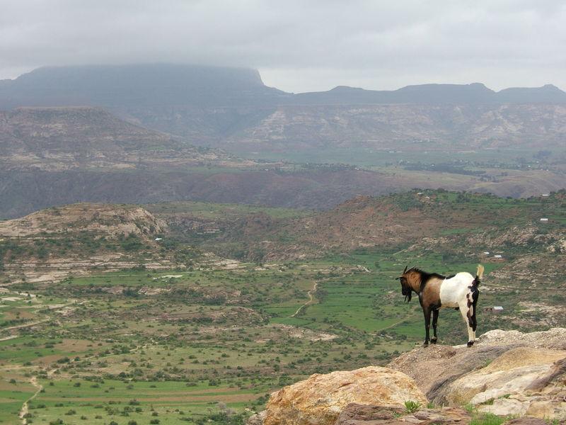 Blick über das Tal von Aksum