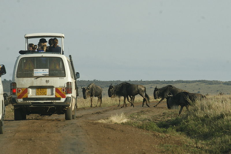 Auf Safari in Kenia (c) Demosh